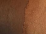 clayplastercoatsimg_0942